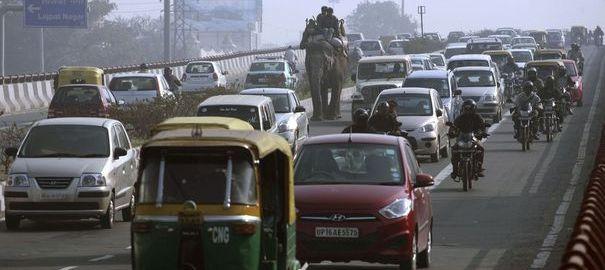 Un éléphant marche au milieu d'une file de véhicules