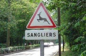 Le panneau indique la présence de cerfs tandis que le panonceau parle de sangliers